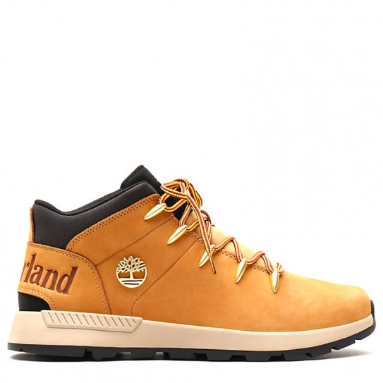 chasseur timberland
