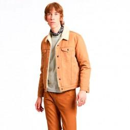 Sherpa Levi's beige