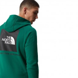 Sweat capuche The North Face Raglan Red Box vert