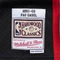 Pau Gasol Memphis Grizzlies 16