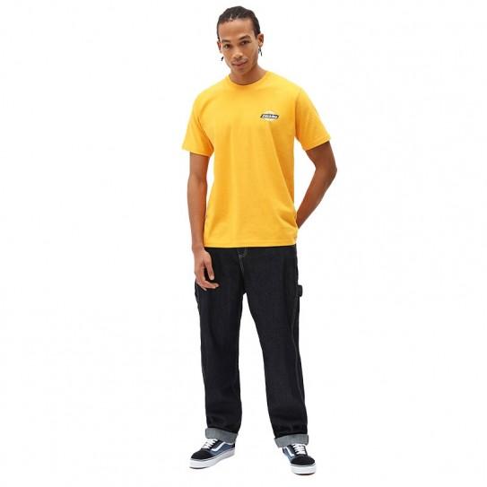 T-shirt Dickies Ruston