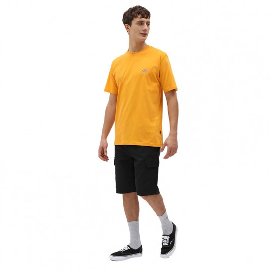 T shirt Dickies Mapleton