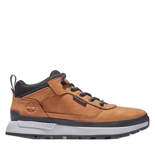 Chaussures Timberland Field Trekker
